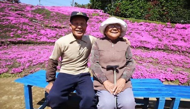 Un japonais de 83 ans plante des milliers de fleurs pour sa femme aveugle !