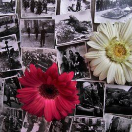 Un voyage dans le temps en 1914-1918 au musée de la Grande Guerre aux portes de Paris
