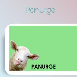 Nouveau jeu de mémoire Stim'Art Joe : Panurge